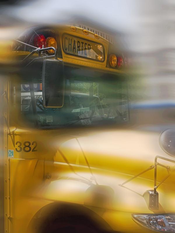 NY Bus